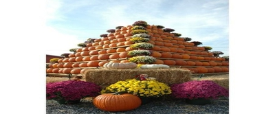 South Jersey Pumpkin Show